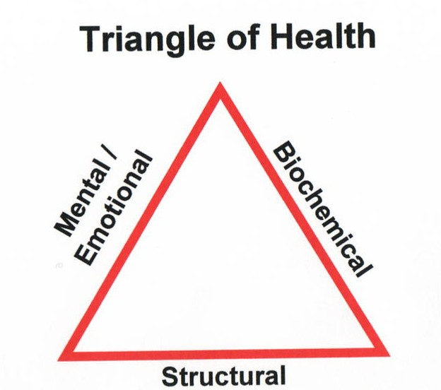 triangle of health body innovations guelph